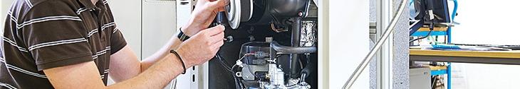 foto-microcogenerarea