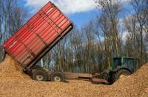 biomasa productie