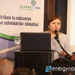 Corina Truica EBC 6 iulie energynomics (1)