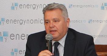 Niculae Havrilet energynomics.ro