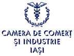 logoCCI-IASI-small