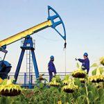OMV Petrom - profit net în creştere cu 13%, la 980 mil lei în S1