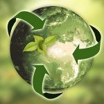 WWF: PNRR is a unique opportunity for a climate neutral economy by 2050