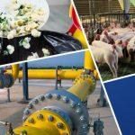 COP26 - Abordare globală pentru reducerea emisiilor de metan